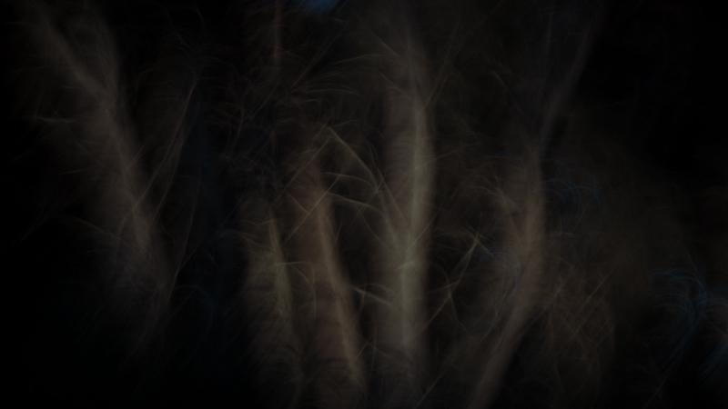 http://alessandrociccarelli.monkeyphoto.org/files/gimgs/28_img8681-1.jpg